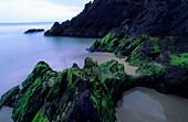 Halbinsel Dingle, Küstenlandschaft bei Slea Head, County Kerry, Irland, Europa