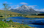Mountain landscape, Mount Errigal, the tallest peak of the Derryveagh Mountains, Gweedore, County Donegal, Ireland, Europe