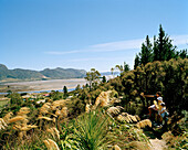 View on tidal flats at lowtide and people in idyllic landscape, Golden Bay, north coast, South Island, New Zealand