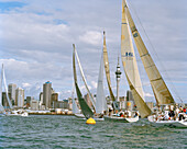 Sailing boats at full speed in front of the high rise buildings at Waitemata Harbour, Auckland, North Island, New Zealand