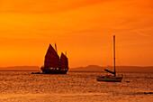 West Indies, Bonaire, sunset, sailing boat, sunset