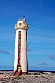 West Indies, Bonaire,Willemstoren  lighthouse in south Bonaire