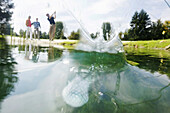 Golf ball in a pond, Strasslach-Dingharting, Bavaria, Germany