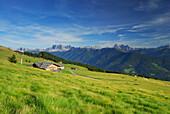 alpine huts on alpine pasture Hodrawiesen, Dolomites with Geislergruppe and Sella range in background, Sarntaler Alpen, Sarntal range, South Tyrol, Italy