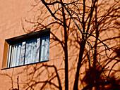 Apartment, Apartments, Architectural detail, Architectural details, Color, Colour, Concept, Concepts, Daytime, exterior, Facade, Façade, Facades, Façades, Flat, Flats, One, outdoor, outdoors, outside, Shadow, Shadows, tree, trees, Window, Windows, D56-703
