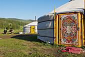 Mongolia. Ovorkhangai province. Yurt camp. Okhon valley.