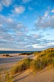 Dunes on Ellenbogen, Sylt Island, North Frisian Islands, Schleswig-Holstein, Germany