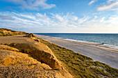 Blick vom Roten Kliff, Kampen, Sylt, Nordfriesland, Schleswig-Holstein, Deutschland