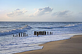 Groynes in the North Sea, Rantum, Sylt Island, Schleswig-Holstein, Germany