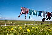 Clothesline, Hallig Hooge, North Frisian Islands, Schleswig-Holstein, Germany