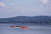 Persons canoeing on Lake Constance, Reichenau, Baden-Wurttemberg, Germany