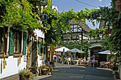 Guests sitting in a wine bar, Winningen, Moselle, Rhineland-Palatinate, Germany