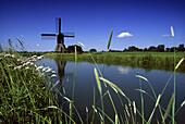 Windmill in Wilster Marshland under blue sky, North Friesland, Schleswig-Holstein, Germany