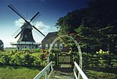 Windmill in the fen area, East Friesland, Lower Saxony, Germany