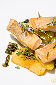 Fish dish of zander with herbs, olive oil and balsamico, Restaurant Guth, Lauterach, Lake Constance, Austria