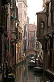 Houses along a narrow canal, Venice, Italy, Europe