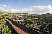 Pico Island Vineyard Culture Unesco Heritage Site, Pico Island, Azores, Portugal