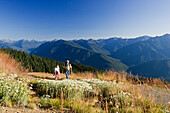Two hikers in an idyllic mountain scenery in the sunlight, Hurricane Ridge, Olympic Nationalpark, Washington, USA