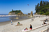 West Coast, Pacific, Olympic Peninsula, Washington, USA