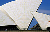 Detail of the Opera House in front of blue sky, Sydney, New South Wales, Australia