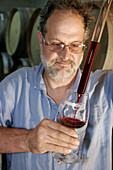 Winemaker, wine, testing, barrel, casket, chemist