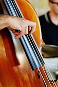 Joy C. Green & Band, double bass, contrabass, Regensburg, Bayern, Germany.