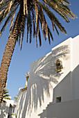 afrika, tunesien, gouvernorat nabeul, hammamet