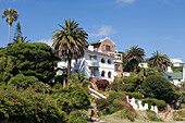 Lavish house, luxury villa along the Garden Route, Mossel Bay, Western Cape, South Africa, Africa