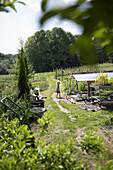 Boy between vegetable patches, biological dynamic (bio-dynamic) farming, Demeter, Lower Saxony, Germany