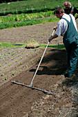 Farmer preparing the ground, biological dynamic (bio-dynamic) farming, Demeter, Lower Saxony, Germany
