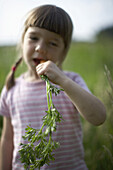 Girl (4 years) eating carrot, biological dynamic (bio-dynamic) farming, Lower Saxony, Germany