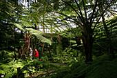 Botanical Garden in Dahlem Berlin.