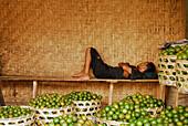 A vendor sleeping at his stall, Central market Pasar Badung, Denpasar, Bali, Indonesia, Asia