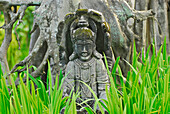 Stone figure behind blades of grass at a tree, Sanur, South Bali, Indonesia, Asia