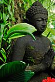 Buddha Figur vor grünen Pflanzen, Ubud, Zentral Bali, Indonesien, Asien