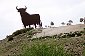 Bull silhouette, typical advertising of Spanish brandy Osborne