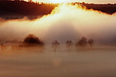 Sunrise in foggy morning at the woernitz (Wörnitz) river. A big screen of fog at the woernitz river, Middle Franconia, Bavaria/Germany