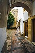 La Judería (old jewish quarter), Historic Center of Cordoba (Added to the Unesco's World Heritage List in 1984). Cordoba. Andalusia, Spain