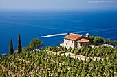Kleine Villa mit Weinberg über der Küste nahe dem Orano Pass, Elba, Italien