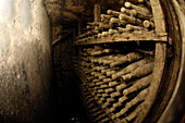 View at dusty wine bottles at a wine cellar, Terlan, South Tyrol, Italy, Europe