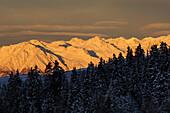 Berglandschaft und Nadelwald bei Sonnenaufgang, Sarntaler Alpen, Südtirol, Italien