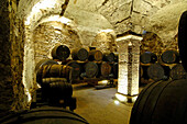 Wine celler with wine barrels, South Tyrol Wine Museum, Caldaro, Kaltern an der Weinstrasse, South Tyrol, Italy