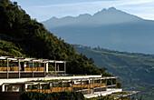 Terraces of the design hotel Pergola Residence in the sunlight, Merano, Val Venosta, South Tyrol, Italy, Europe