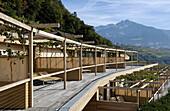 Terrassen des Designhotel Pergola Residence im Sonnenlicht, Meran, Vinschgau, Südtirol, Italien, Europa