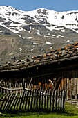 Alpine hut with weathered wooden fence in front of snow covered mountains, Schnals valley, Val Venosta, South Tyrol, Italy, Europe