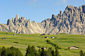Alpine meadow with cabins in summer, Alpe di Siusi, Valle Isarco, South Tyrol, Italy, Europe