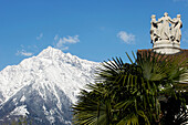 Palm trees and mountain landscape, Texel Mountain Range in the background, Meran, Burggrafenamt, South Tyrol, Italy