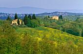 Hügellandschaft mit Landhäusern, Toskana, Italien, Europa