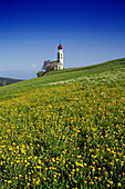 Wildflower meadow, Chapel San Valentino in the background, Siusi allo Sciliar, Dolomite Alps, South Tyrol, Italy