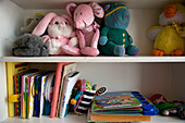 Book, Bookcase, Bookcases, Books, childhood, Color, Colour, Concept, Concepts, education, Growing, Growth, indoor, indoors, infancy, interior, learn, learning, Leisure, Many, Object, Objects, Reading, Shelf, Shelves, Shelving, Still life, Teddy bear, Tedd